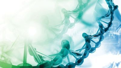 INSIGHTS on Next-Generation Sequencing