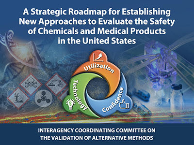 The strategic roadmap from the Interagency Coordinating Committee on the Validation of Alternative Methods
