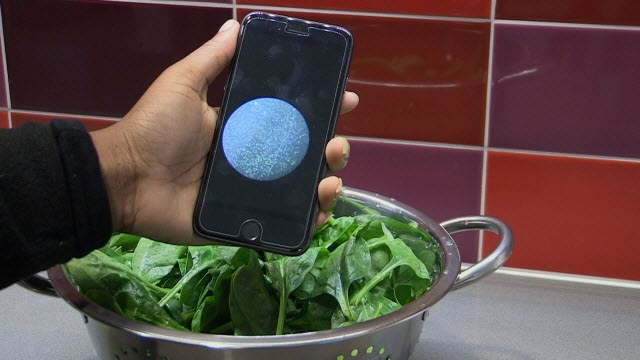 sensor with spinach