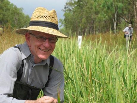 Professor Robert Henry Collects Wild Rice