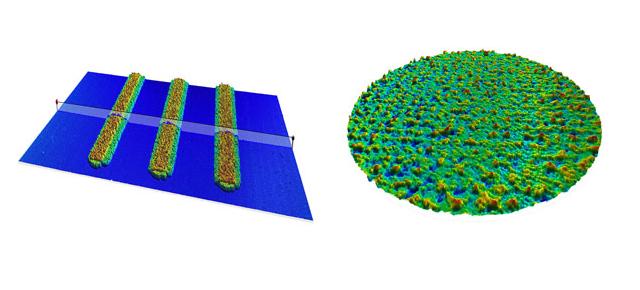 Printed biosensor analyzed using FocalSpec Map software