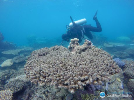 Surveying the Damage on the GBR