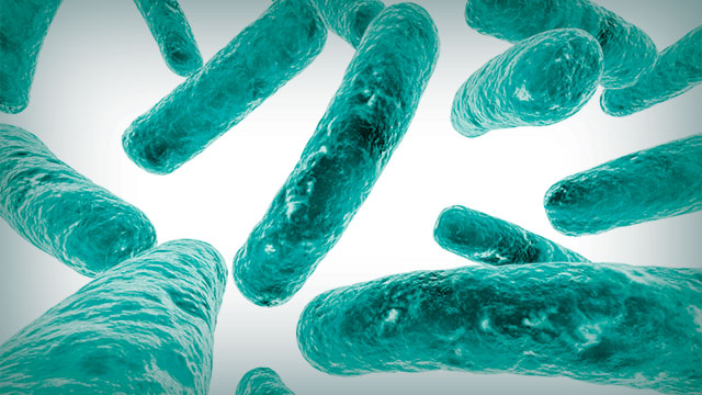 insights on industrial microbiology
