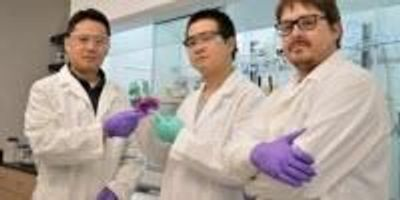 Chemists Develop Novel Washington Red Dye for Bio-Imaging