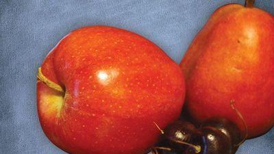 INSIGHTS on Pesticide Analysis