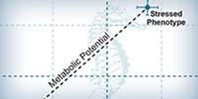 How Defining Metabolic Phenotype Works
