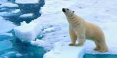 Science Community Considers Approaches to Climate Disinformation