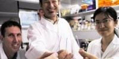 Dipstick Technology Could Revolutionize Disease Diagnosis