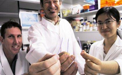 UQ dipstick technology could revolutionize disease diagnosis