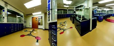 Renovation of Lab Space Yields Positive Results