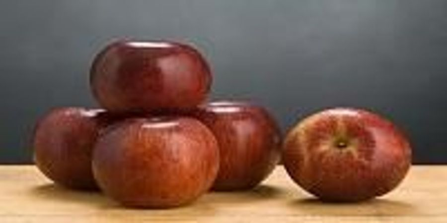 Disease-Resistant Apples Perform Better Than Old Favorites