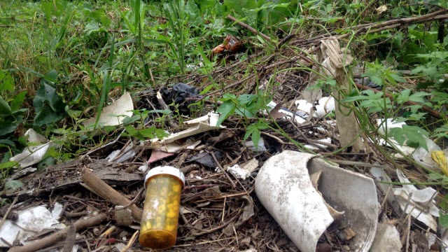 Pharmaceutical and personal care product pollution
