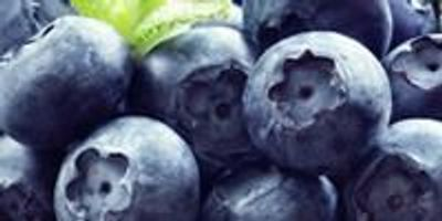 Study Lists Foods for Fighting Rheumatoid Arthritis Symptoms and Progression