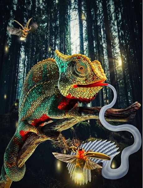 Chameleon Robots
