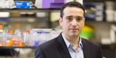 Novel Treatment Causes Cancer to Self-Destruct Without Affecting Healthy Cells