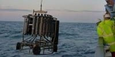 Scientists Call for More Research on How Human Activities Affect the Seabed