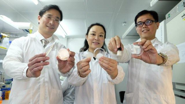 gel patch research team