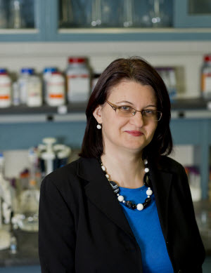 Clarkson University professor Silvana Andreescu