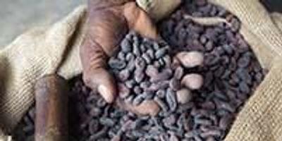 INSIGHTS on Tackling Food Fraud
