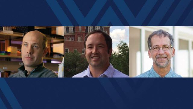 WVU professors Steve DiFazio, Jonathan Cumming, and Eddie Brzostek