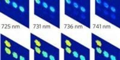 New Bioimaging Technique Is Fast and Economical