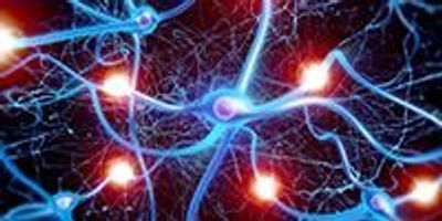 Brain Cells Found to Control Aging
