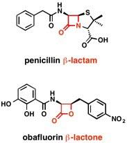 beta-lactam ring