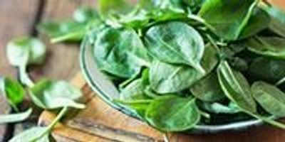 Newly Published Spinach Genome Will Make More Than Popeye Stronger