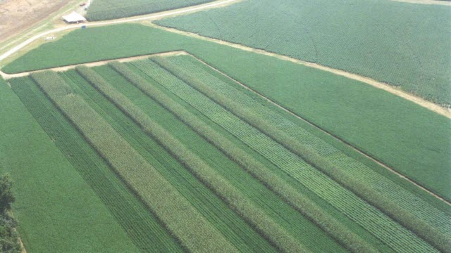 Aerial photo of Agronomic Systems Study in Milan, Tenn.