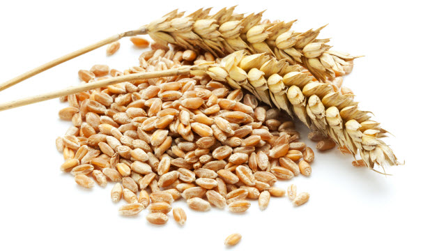 Dietary Gluten Is Not Linked to Heart Risk in Non-Celiacs