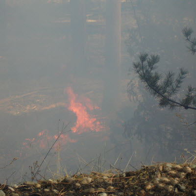 rescribed burn in the Kootenai National Forest