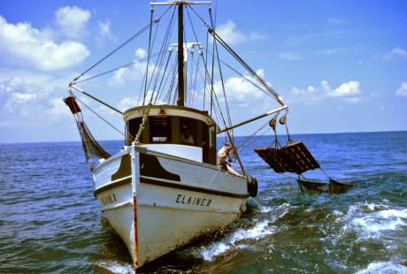 Double-rigged shrimp trawler