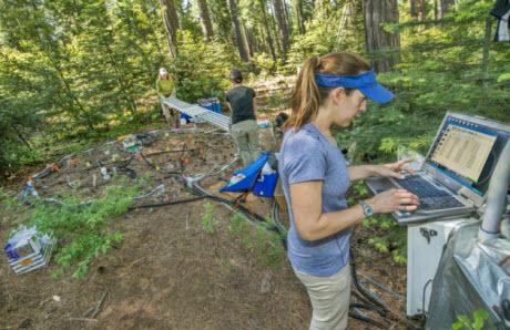 Scientist Caitlin Hicks Pries