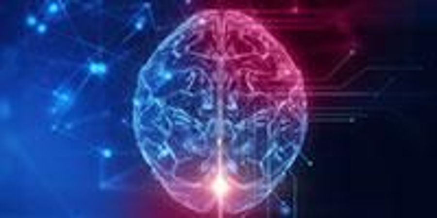 Study Finds New Mechanism to Control Information Flow in the Brain