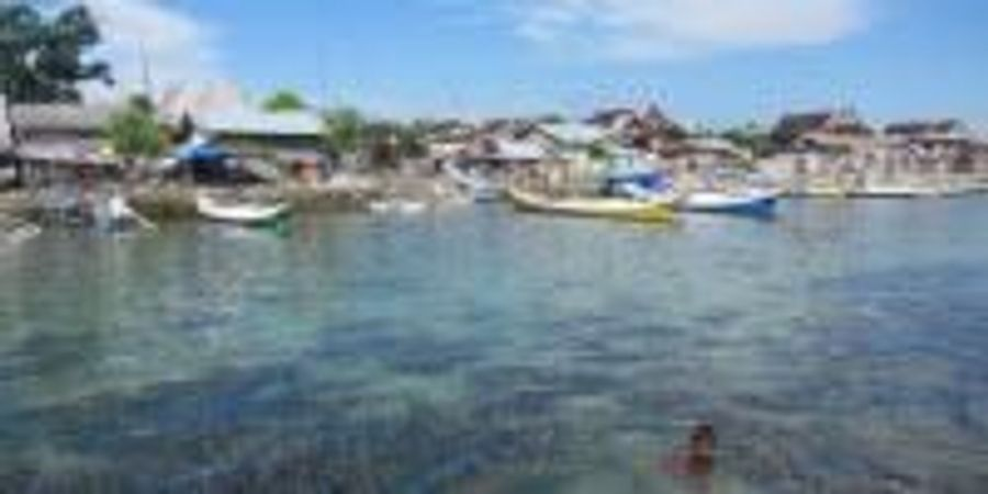 Underwater Seagrass Meadows Dial Back Polluted Seawater