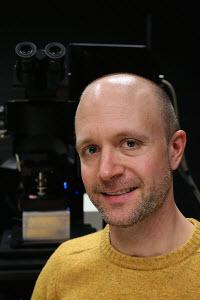Garret Stuber, PhD