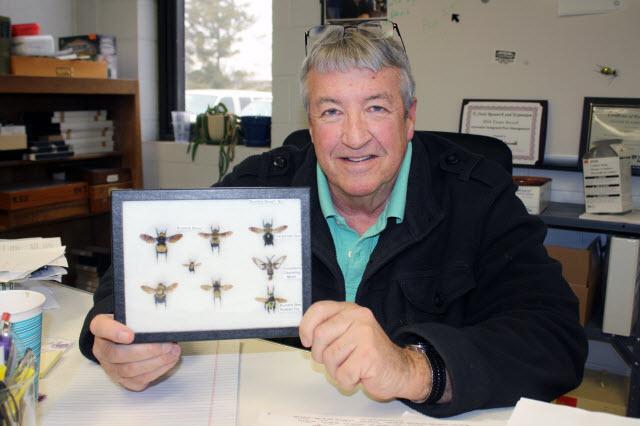 Jeff Whitworth, associate professor of entomology