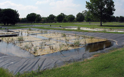The floating treatment wetland experiment