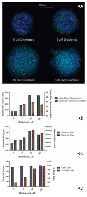 Images and image analysis of liver microtissue spheroids