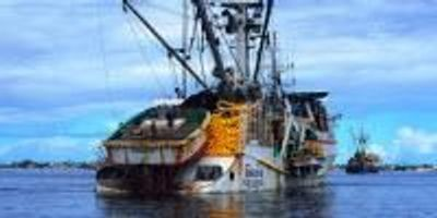 Global Climate Target Could Net Additional Six Million Tons of Fish Annually