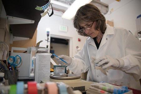 Patricia Tavormina, associate research scientist at Caltech
