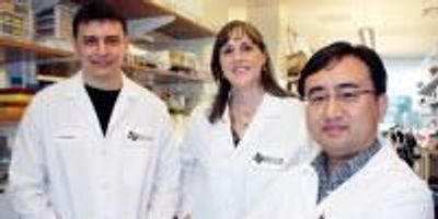 Scientists Discover New Cancer Connection Between Enzymes