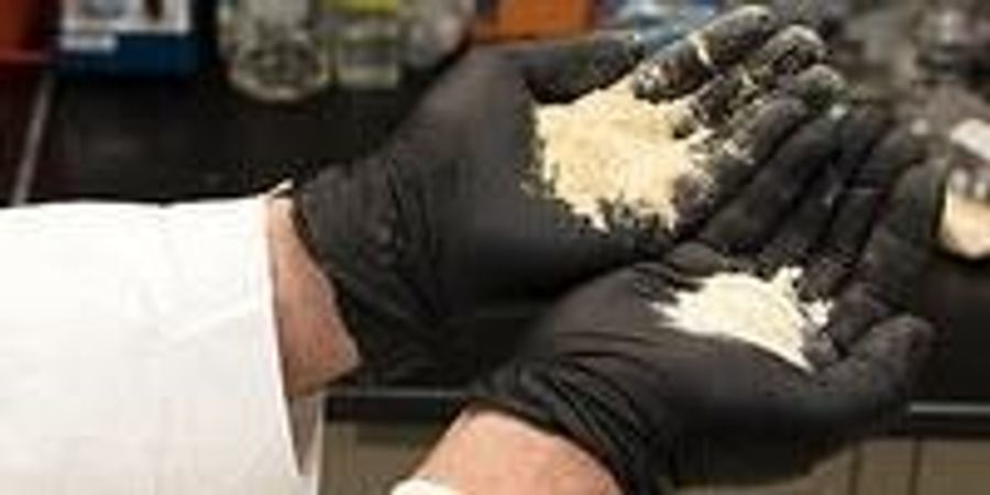 Sawdust Reinvented into Super Sponge for Oil Spills