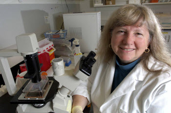 Linda Mansfield, a microbiologist with the College of Veterinary Medicine,