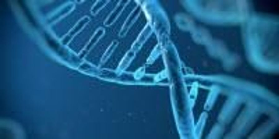 Scientists Uncover Genetic Evidence That 'We Are What We Eat'