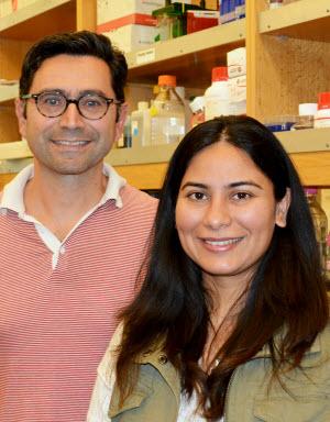 Professor Ardem Patapoutian and professional scientific collaborator Ruhma Syeda
