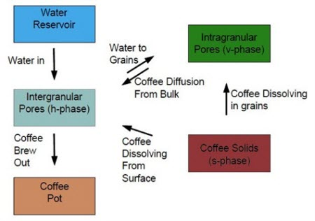 Transfers included in the coffee extraction model