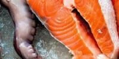 Multi-Element Analysis of Seafood by ICP-OES is Detailed in New Application Brief