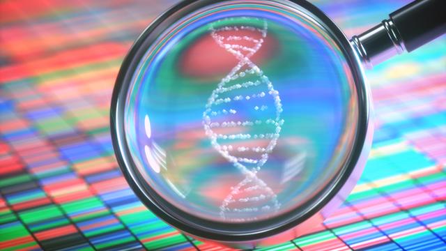 guidelines on forensic genetic genealogy released by DOJ