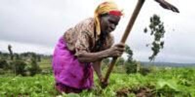 USAID Food Security Program in Review